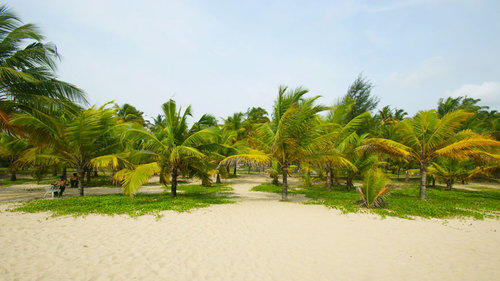 Marari_Beach_Resort_DSC06004.jpg